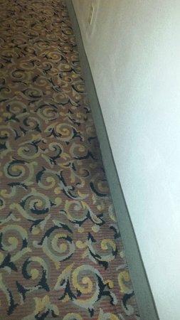 Howard Johnson Inn Augusta-Fort Gordon: Fire? stained carpet