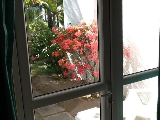 Veranda Palmar Beach: piccolo giardino fuori dalla camera
