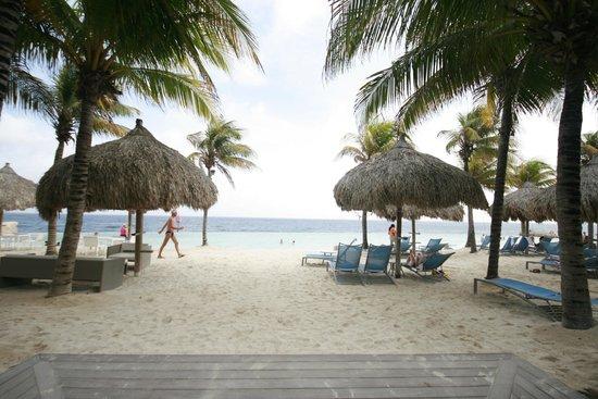 Renaissance Curacao Resort & Casino: Piscina do hotel