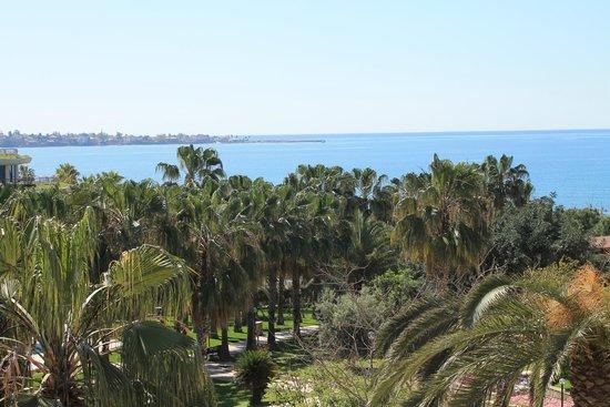 Barut Arum: Dies ist der Blick vom Balkon über den tollen Garten