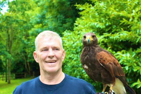 Ashford Castle: Falconry School, with Hawk Stoker