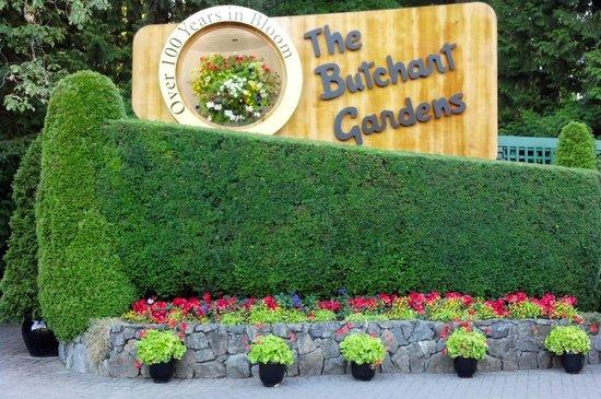Butchart Gardens: Lovely Butchart Garders