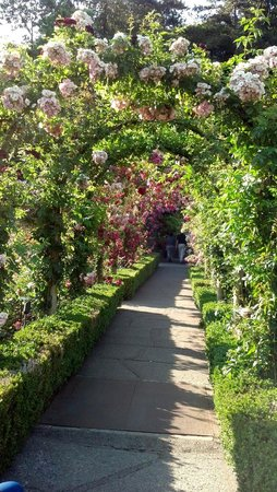 Butchart Gardens: Tunnel of roses