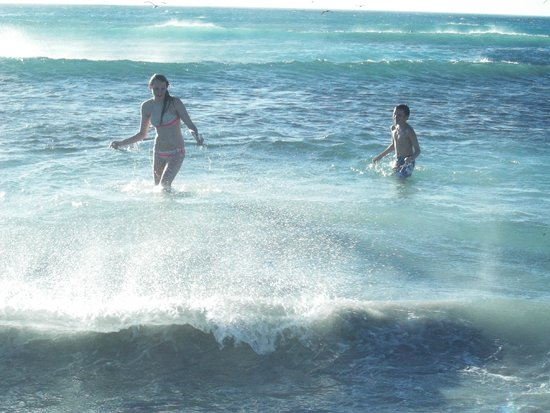 Scarborough Beach: my kids catching fish with bare hands