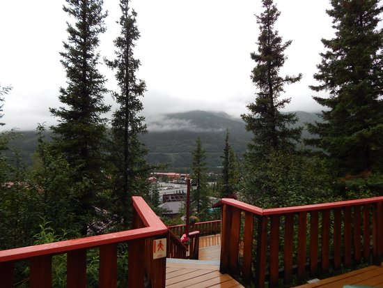 Denali Crow's Nest Cabins: view