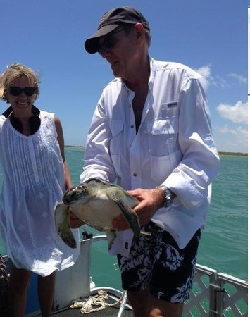 South Padre Island Dolphin Research & Sea Life Nature Center: a real life sea turtle rescue