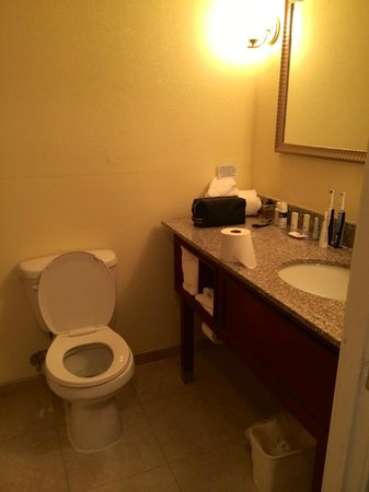 The Lakeside Inn: Salle de bain