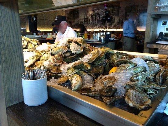 Island Creek Oyster Bar : Bar à huîtres divin!