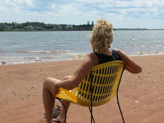 Clark's Sunny Isle Motel : small beach at back of property