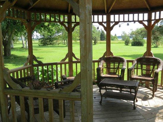 Clark's Sunny Isle Motel : garden
