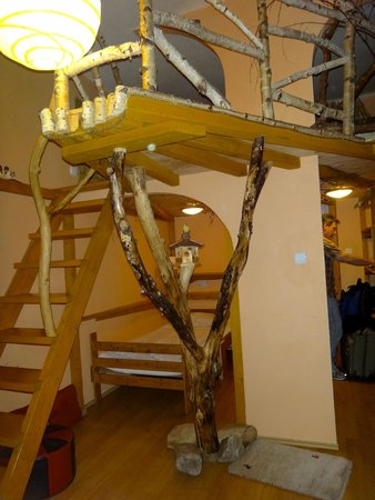 Artharmony Pension and Hostel: Janina - view of steps to loft