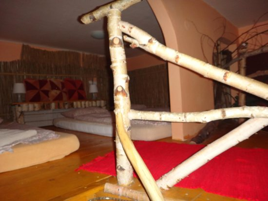 Artharmony Pension and Hostel: Janina - entering loft