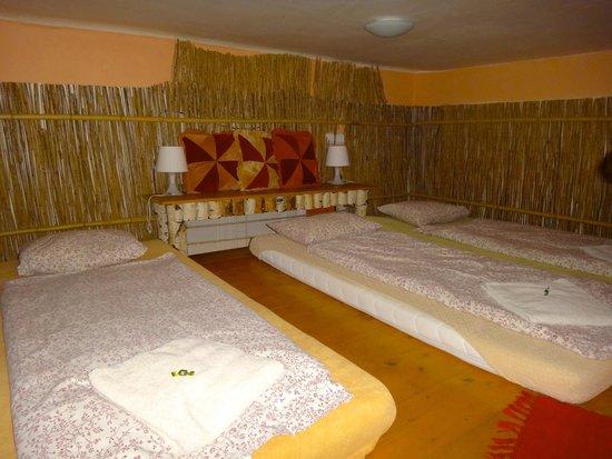 Artharmony Pension and Hostel: Janina - 3 single beds in loft