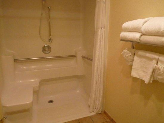 Best Western Turquoise Inn & Suites: rollstuhl-geeignetes Badezimmer
