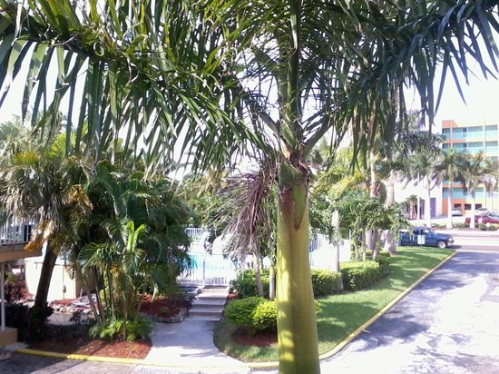 The Bayside Inn & Marina: 2nd Fl View Rm 213