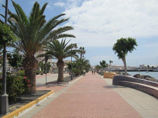Barcelo Fuerteventura Thalasso Spa : Front