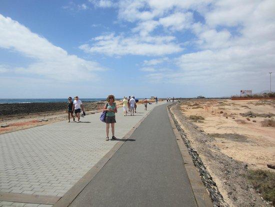 Barcelo Fuerteventura Thalasso Spa : Promenade