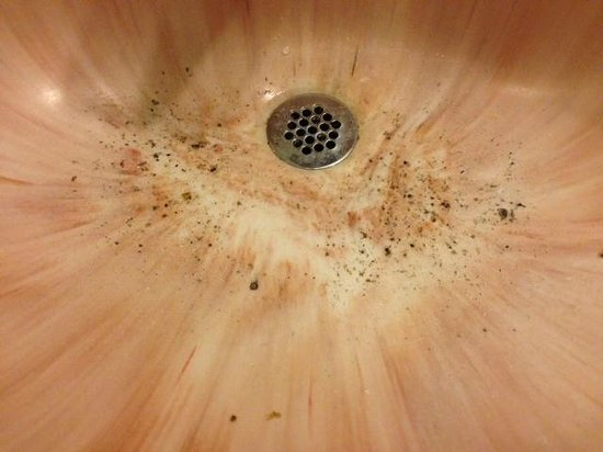 Carefree Inn Houston Medical Center: Debris in our sink....