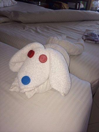 Xperience Sea Breeze Resort: Towel art