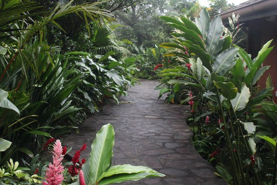 Rio Celeste Hideaway Hotel: Walkway