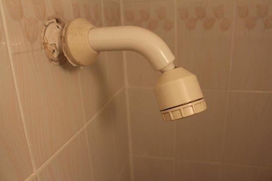 Barry's Hotel: Douche de la salle de bains