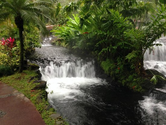 Tabacon Thermal Resort & Spa: The thermal hot springs