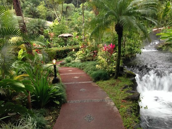 Tabacon Thermal Resort & Spa: grounds near thermal hot springs