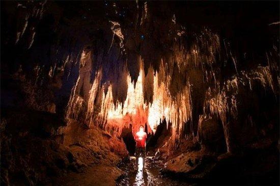 Nikau Cave : Inside