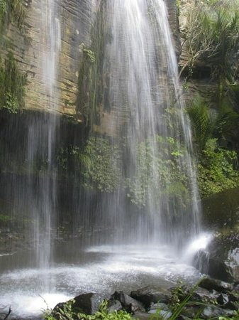 Nikau Cave : The waterfall in close walking distance