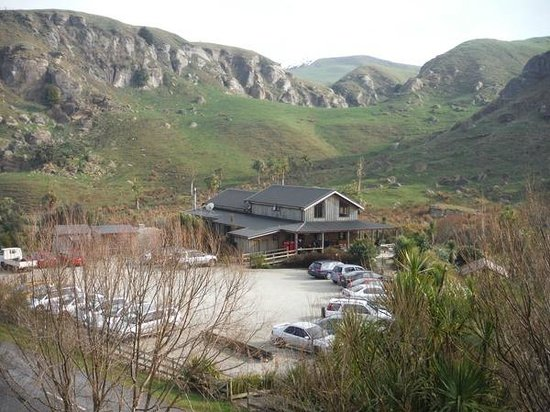 Nikau Cave : The venue