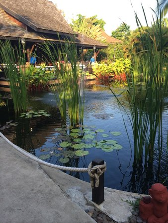Bo Phut Resort & Spa: The beautiful grounds