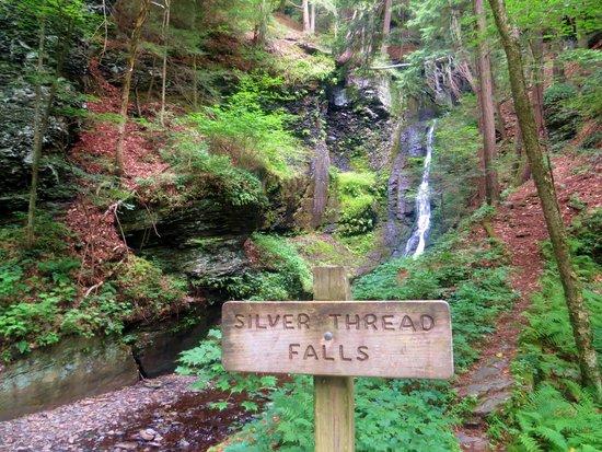 Dingmans Falls : Silver Thread Falls