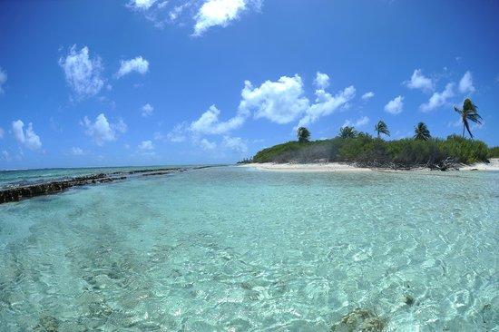 Cayo Bolivar: Chegada na ilha