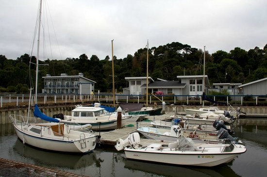 Tomales Bay Resort: From the pier