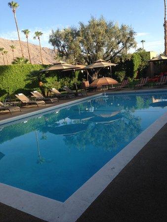 Desert Riviera Hotel: Pristine pool area