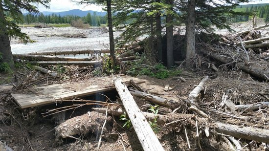 Allen Bill Pond: This used to be the picnic area.