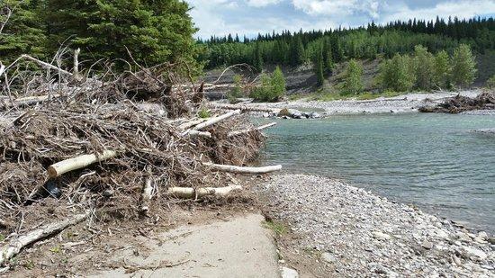 Allen Bill Pond: More flood damage, July 20 2014.
