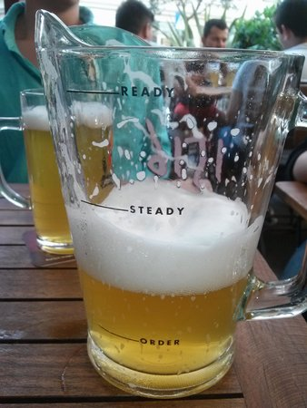 1516 Brewing Company : 1516 pitcher-ready, steady, order!