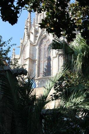 Église Sainte-Marie-de-la-Mer : Vista interna dell'esterno