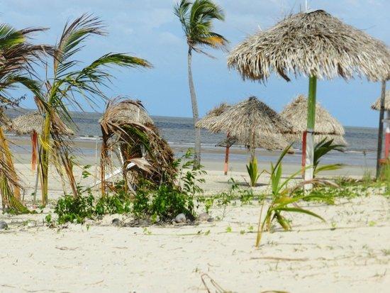 Praia do Pesqueiro : barracas