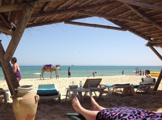 The Orangers Beach Resort & Bungalows: the beautiful beach