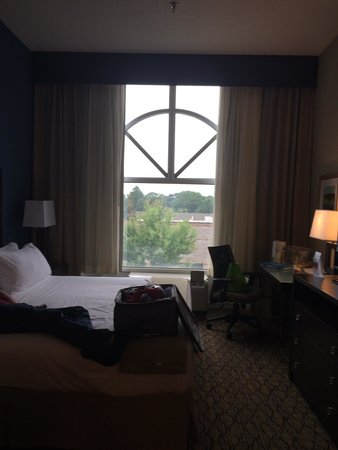 Holiday Inn Express Hotel & Suites Auburn: Suite. Room 314. Large window.
