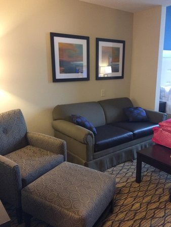Holiday Inn Express Hotel & Suites Auburn: Sitting area and sofa sleeper