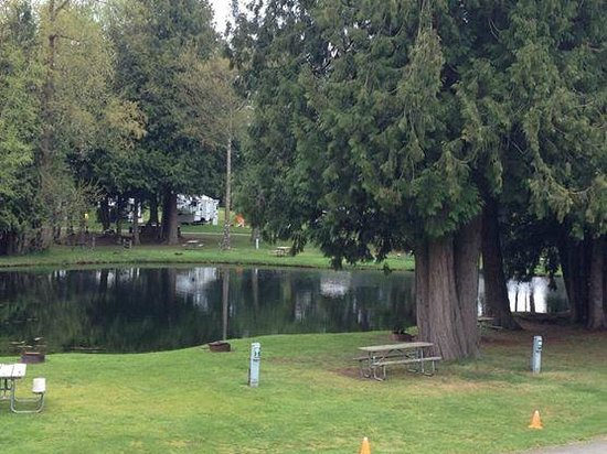 Lynden / Bellingham KOA: One of the large ponds.