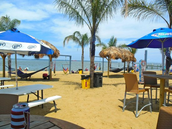 Kentmorr Restaurant and Crab House : Tropical ambience on the Chesapeake Bay