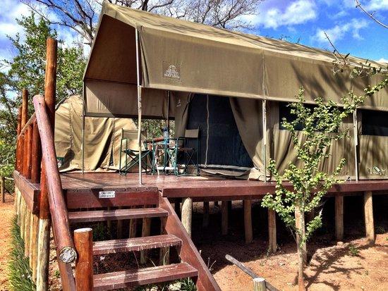 Tent #1 at Tydon Safari Camp
