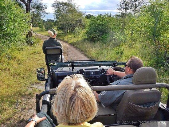 Tydon Safari Camp : Riding in open vehicle at Sabi Sands