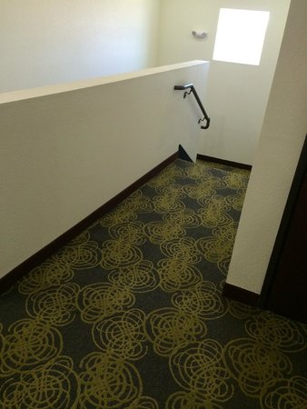 Comfort Inn & Suites Artesia: Carpeted steps...