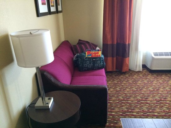 Comfort Inn & Suites Artesia: Foldout couch
