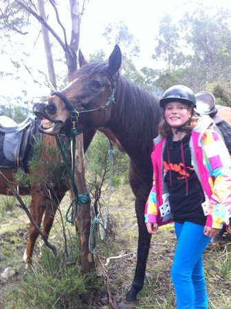Huon Valley Horsetrekking